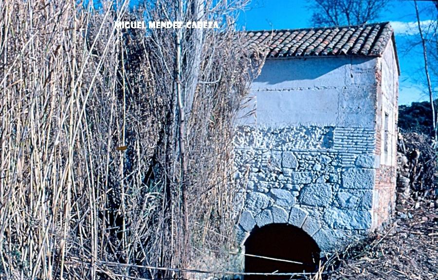 La imagen tiene un atributo ALT vacío; su nombre de archivo es escanear0021.jpg